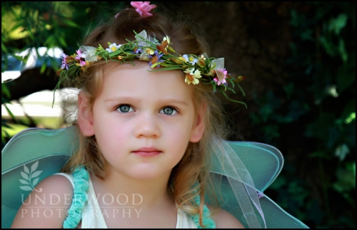 Another Faery in the woods